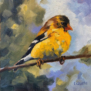 Goldfinch Reproduction by Liz Quebe