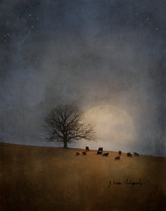 I Can't Stay Long by Jamie Heiden
