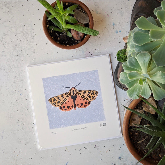 Harnessed Tiger Moth Silkscreen Print by Allison and Jonathan Metzger