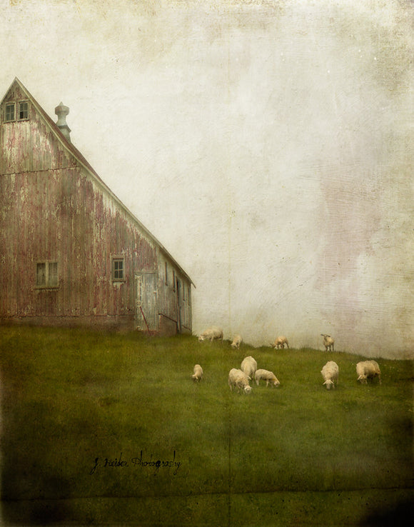 Searching for Clover by Jamie Heiden