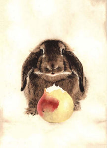 Rabbit with Pear Card from Artists to Watch