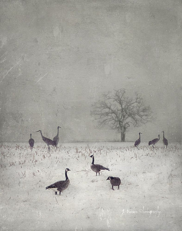 The Layover by Jamie Heiden