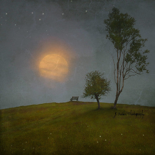 Wish for More Wishes by Jamie Heiden