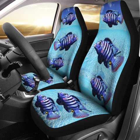 Afra Cichlid Fish Print Car Seat Covers