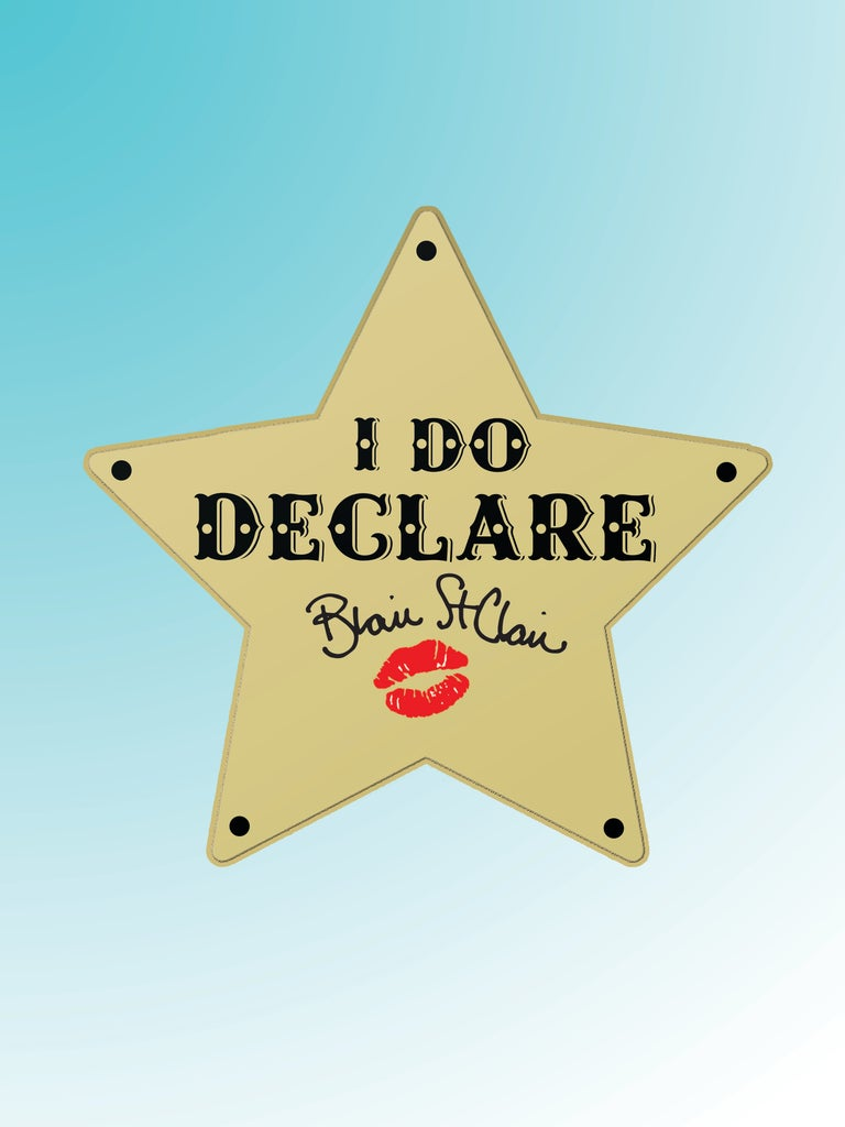 """I Do Declare"" Pins -- LIMITED QUANTITY"