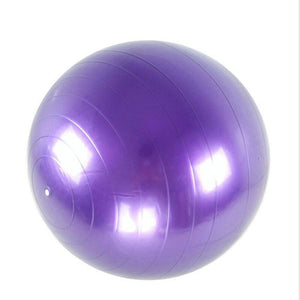 Anti-Slip Home Exercise Gym Ball - Ideal for Yoga, Pilates and Fitness - FlexActive Fitness