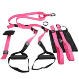 Suspension Training TRX Straps. - FlexActive Fitness