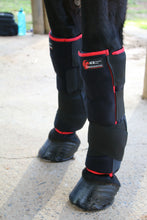 Load image into Gallery viewer, Horse Boots - Equessential Ice Boots Magnetic Horse Therapy
