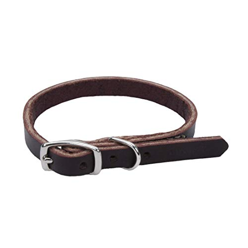 Coastal Pet Products DCP210312 Leather Latigo Dog Collar, 3/8 by 12-Inch