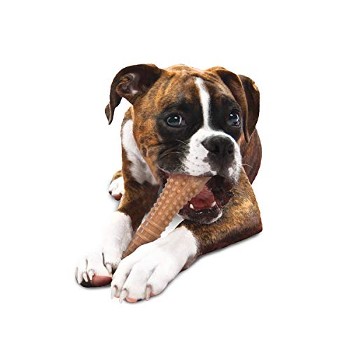 Nylabone Dura Chew Textured Toy, X-Large - Bacon Flavored Bone ( Standard Packaging )
