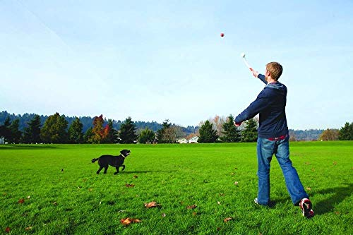 Chuckit! Dog Ball Launcher, Sport 25M - 2 Pack