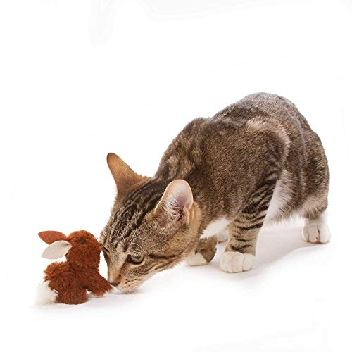 Our Pets Play-N-Squeak Backyard Cat Toy, Bunny - 2 Pack