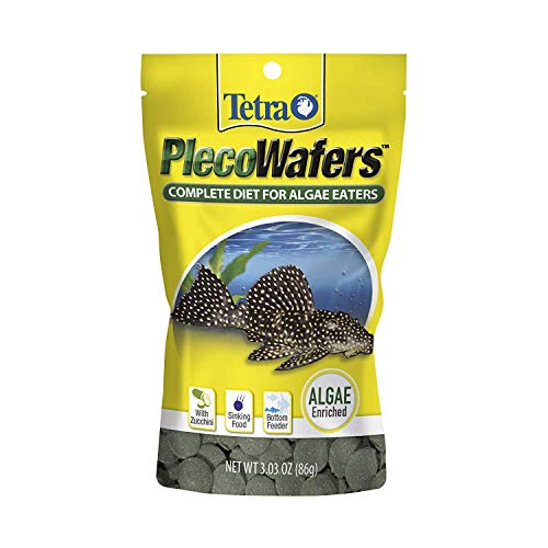 Tetra Algae Wafers