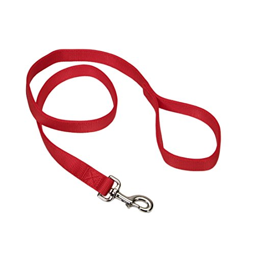 "Coastal Pet Double-Ply Nylon Dog Leash, Red Color | 1"" Wide by 6-Feet Long 