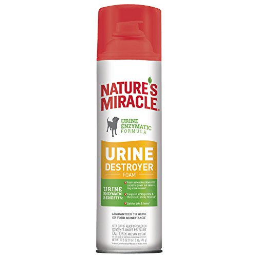Nature's Miracle Nm Dog Urine Destroyer Foam, 17.5 oz
