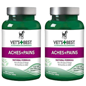 Aspirin Free Aches + Pains Dog Supplement | Vet Formulated for Dog Pain Support and Joint Relief | 100 Chewable Tablets