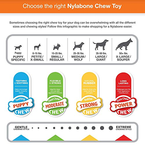Nylabone 2 Pack of Power Chew Double Bones, Wolf, Bacon Flavor, for Dogs Up to 35 Pounds, Made in the USA