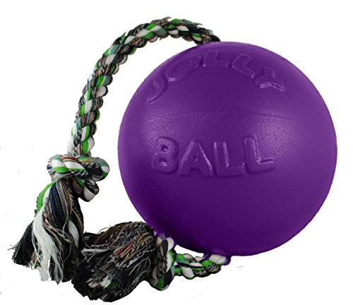 Jolly Pets 8-Inch Romp-n-Roll, Purple