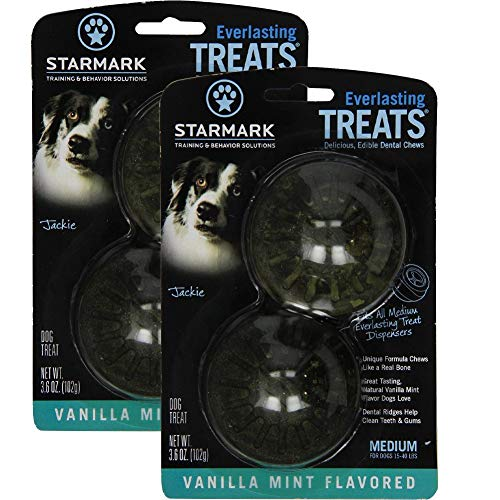 Everlasting Treat Refills, Vanilla Mint, 2 Pack of 2 (4 Treats Total)