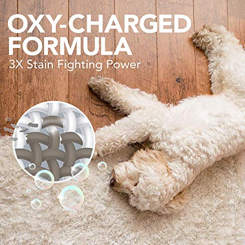 Simple Solution Oxy Charged Pet Stain and Odor Remover | Eliminates Pet Stains and Odors with 3X Cleaning Power