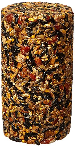 Pine Tree 8001 Woodpecker Classic Seed Log, 40-Ounce (2-Pack)