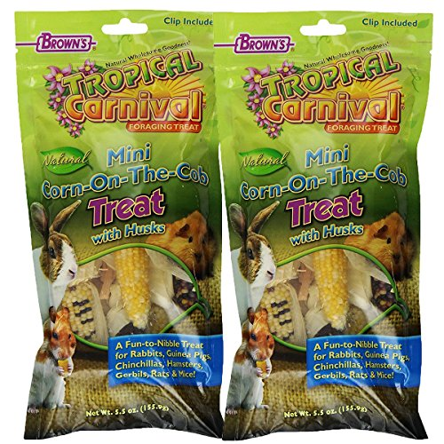 Brown's Tropical Carnival Mini Corn-on-the-Cob with Husks Foraging Treats, 2-Pack