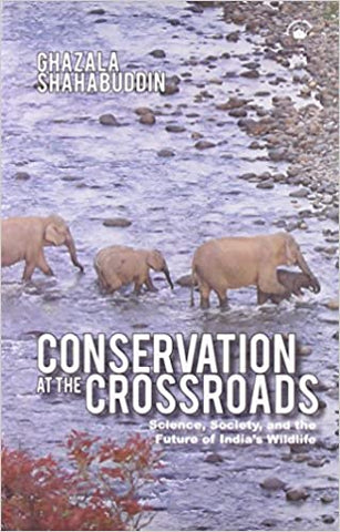 Conservation at the Crossroads