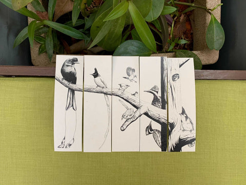 Set of five illustrated bookmarks of birds of South India