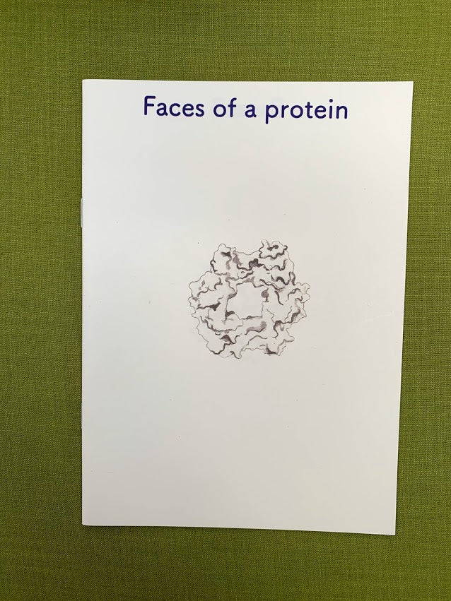 Faces Of A Protein