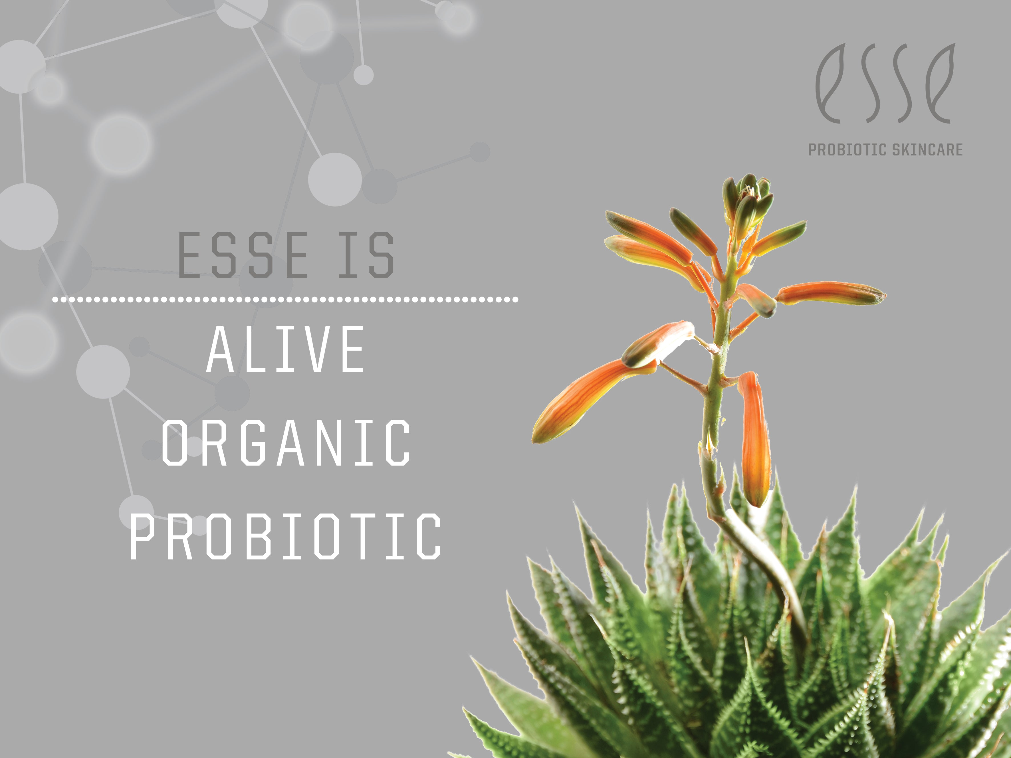 Esse is Alive, Organic and Probiotic