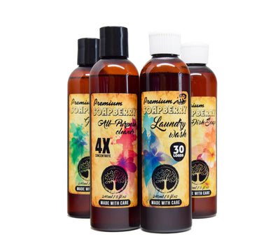 Soapberry Cleaner Pack