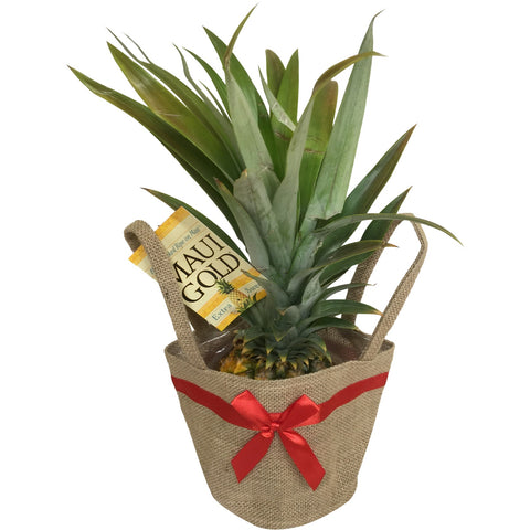 Burlap Christmas Jute Bag - Mr. Pineapple