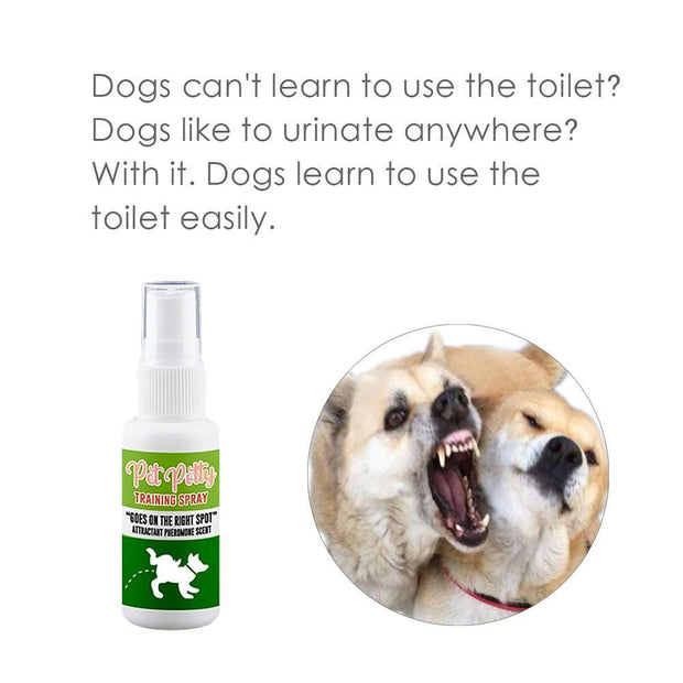 Pet Toilet Training Aid - Cosmas Collections