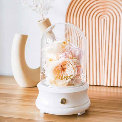 Customised Preserved Floral Bluetooth Speaker and Lamp (Cream and Pastel Pink)