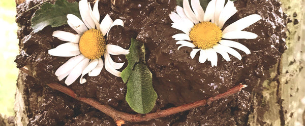 Forest School activity making muddy faces out of mud and flowers and seeds and nuts. An outdoor activity for children