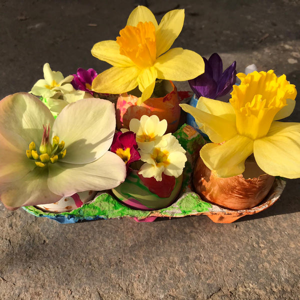 spring flowers arrangement in egg shells