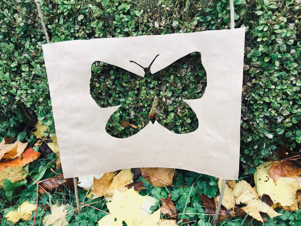 paper cutout of butterfly image with box hedging behind