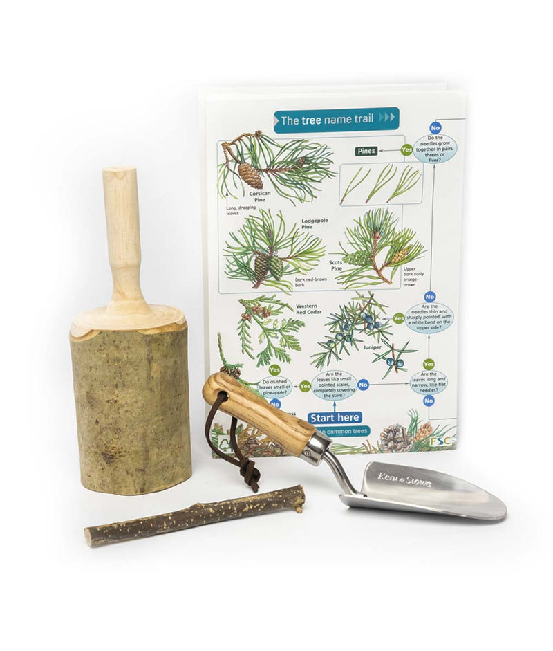 The British Woodland Den Kit