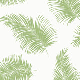LN20304 tossed palm peel and stick removable wallpaper from the Luxe Haven collection by Lillian August