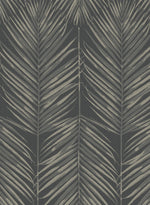 MB30000 palm leaf wallpaper from the Beach House collection by Seabrook Designs