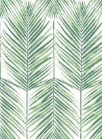 MB30034 palm leaf wallpaper from the Beach House collection by Seabrook Designs