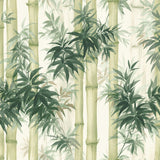 SD40501HN Moso bamboo watercolor botanical wallpaper from Say Decor