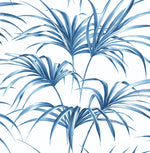 NW32502 tropical palm leaf peel and stick removable wallpaper by NextWall