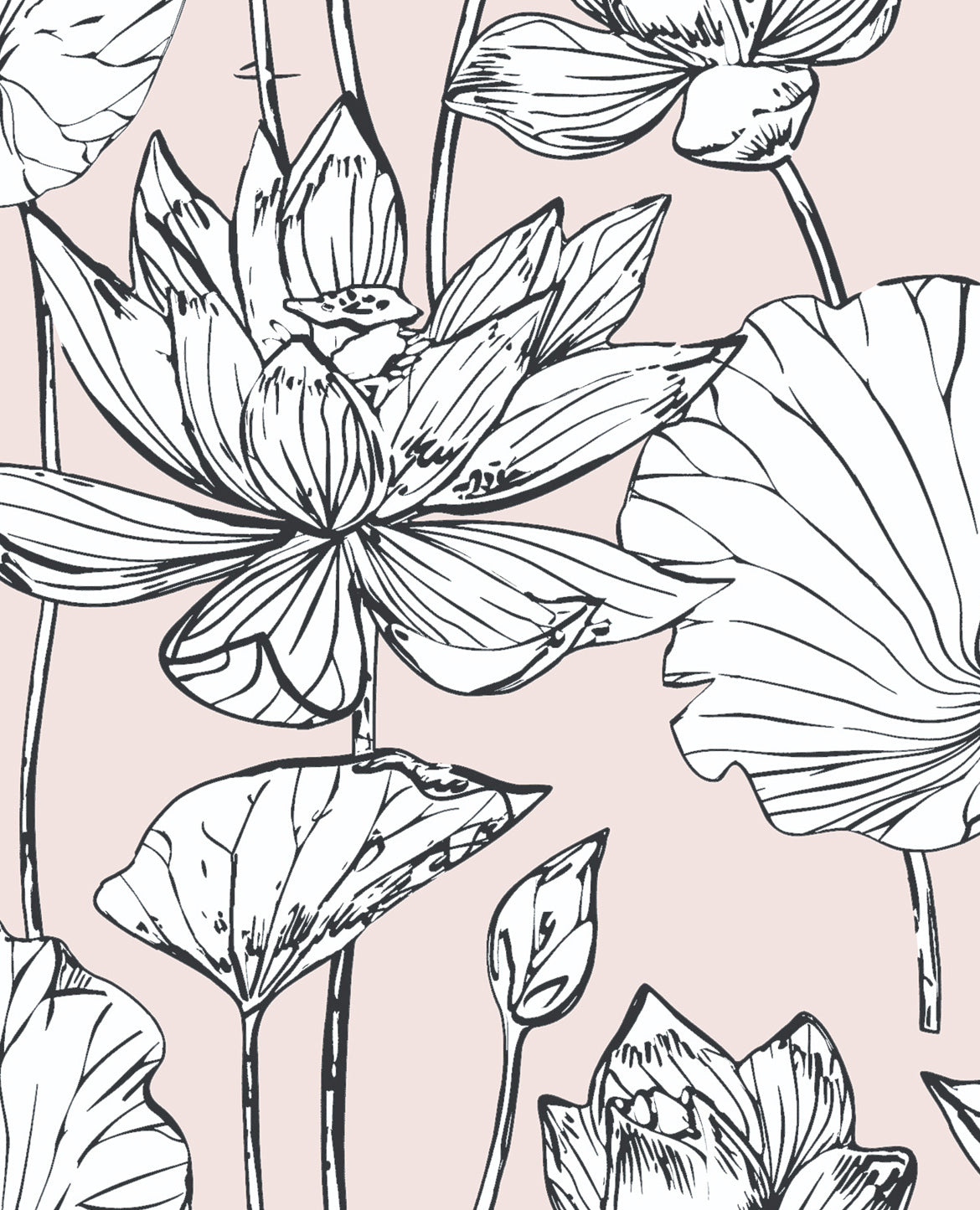 Removable Water-Activated Wallpaper Pink Block Indian Botanical Lotus