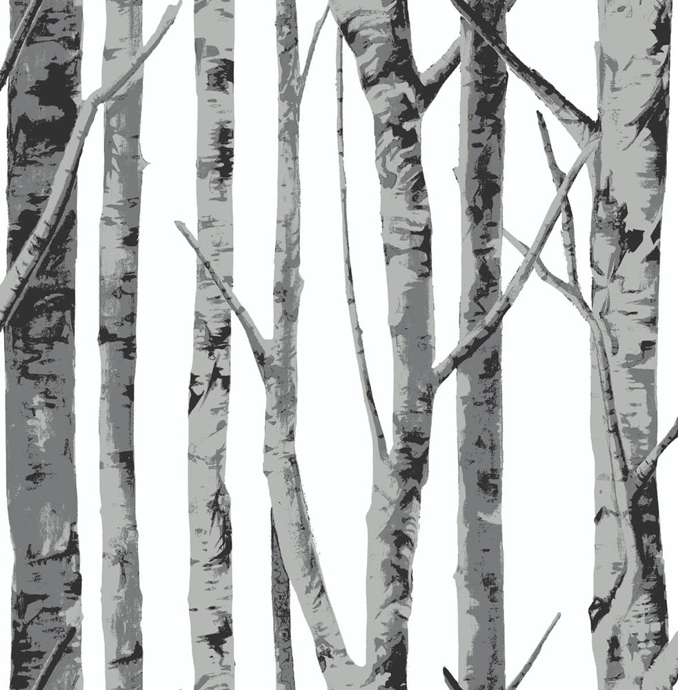 NW34800 birch tree peel and stick removable wallpaper by NextWall