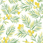 NW36703 lemon branch botanical peel and stick removable wallpaper from NextWall