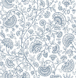 NW36812 paisley trail bohemian peel and stick removable wallpaper from NextWall
