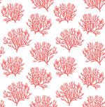 NW38001 coastal coral reef peel and stick removable wallpaper from NextWall