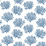 NW38002 coastal coral reef peel and stick removable wallpaper from NextWall