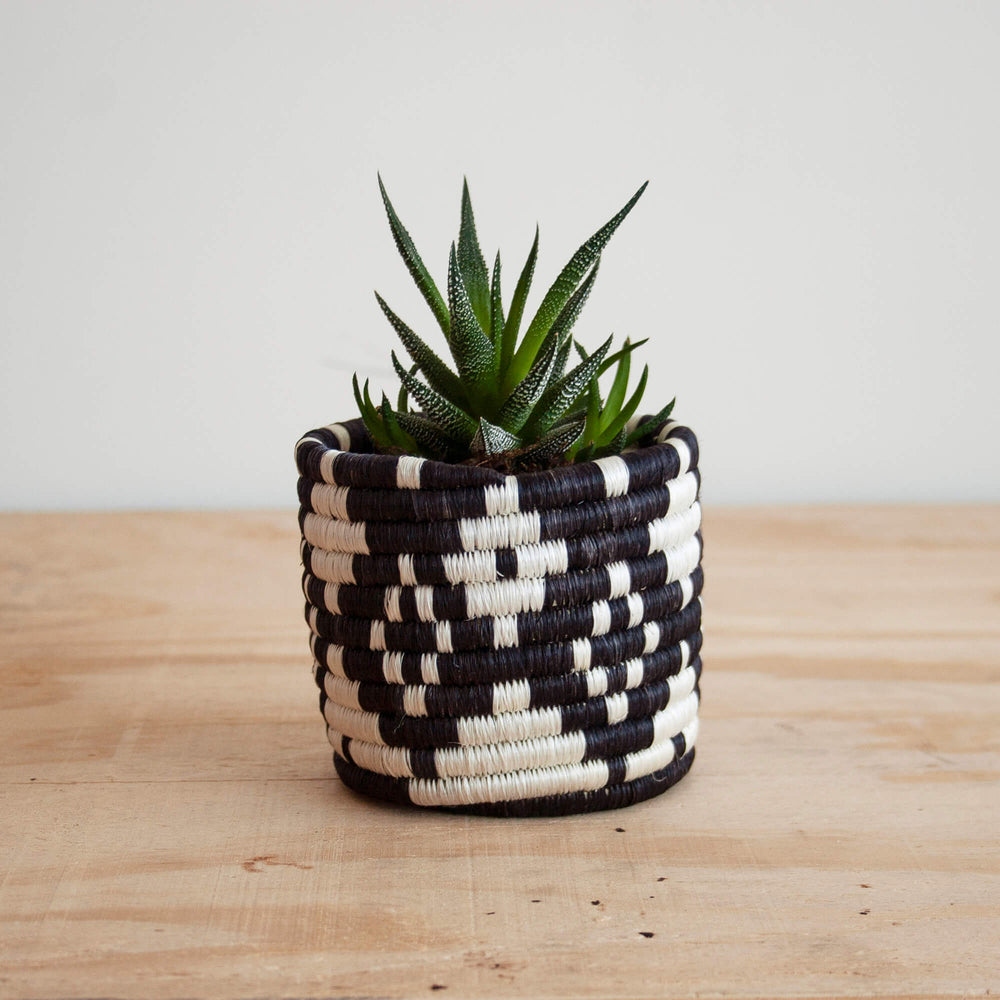 Amsha Ndora Sisal Small Decorative Planter